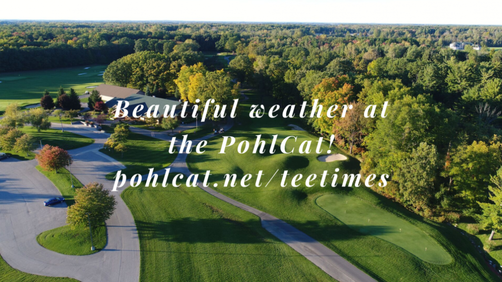 PohlCat-Weather-Blog